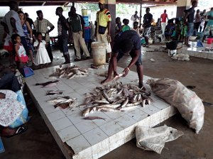 Fish market at the marina